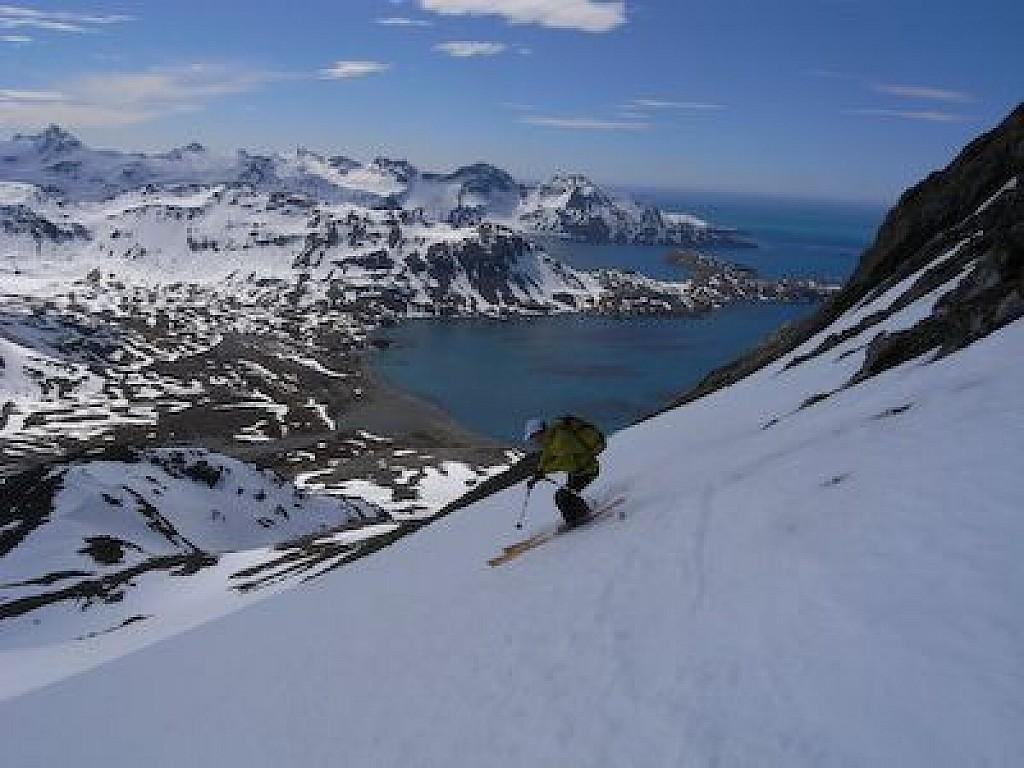 Géorgie du Sud - Sur les traces de Shackleton