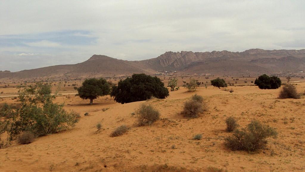 Maroc - Raid Sud Ouest Marocain