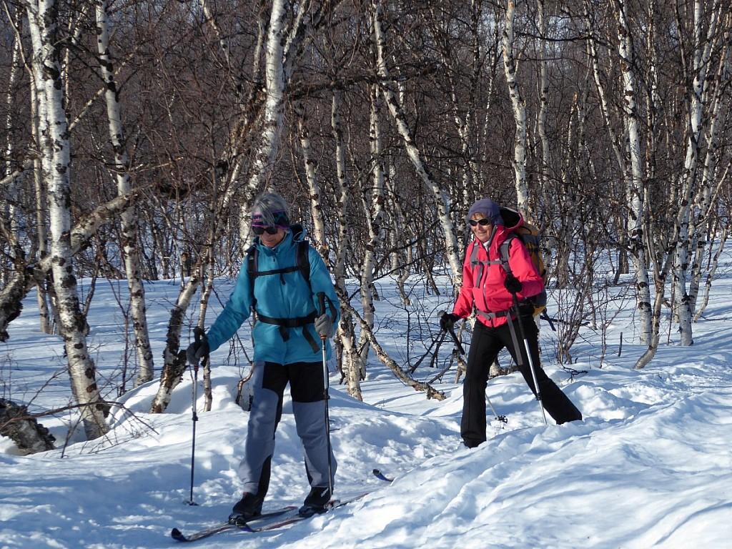 La Piste Royale - Raid à ski de fond en Laponie suédoise - Les matins du monde