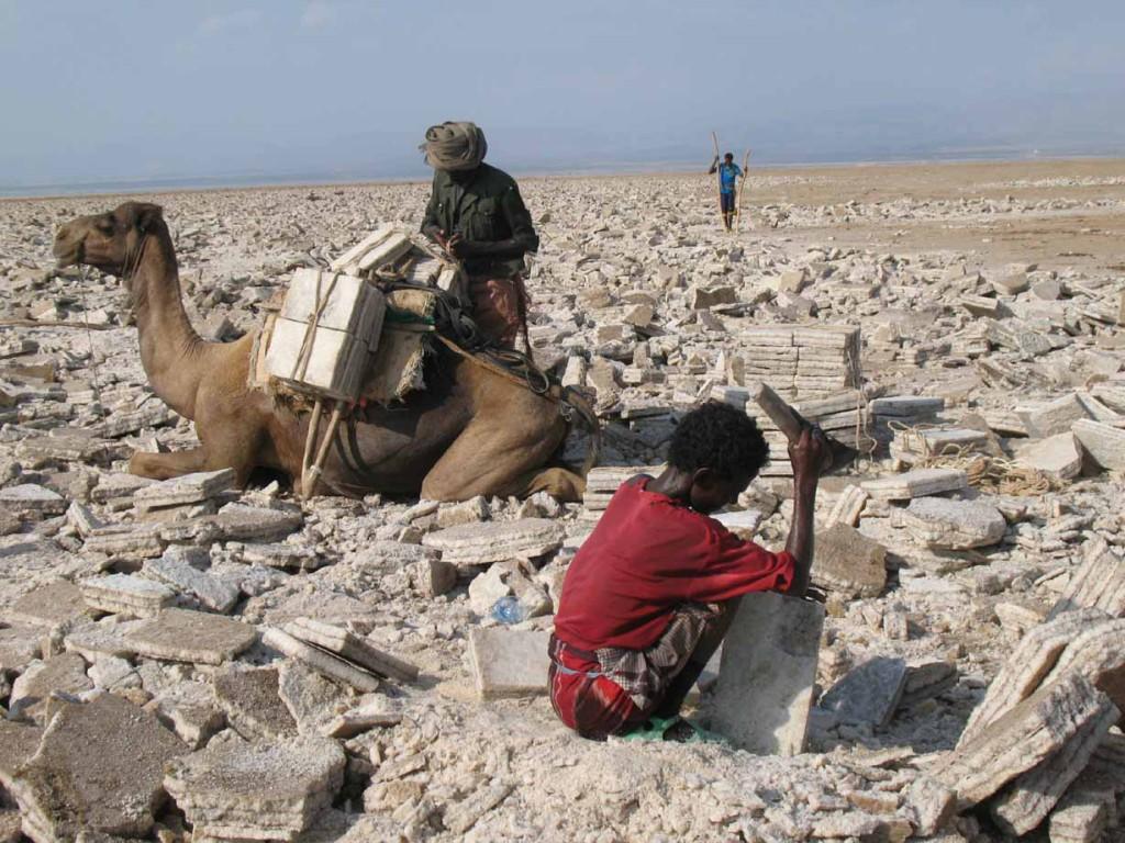 Ethiopie - De la dépression du Danakil aux montagnes d'Abyssinie