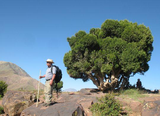 Maroc - Le Jbel Rat – Haut-Atlas marocain