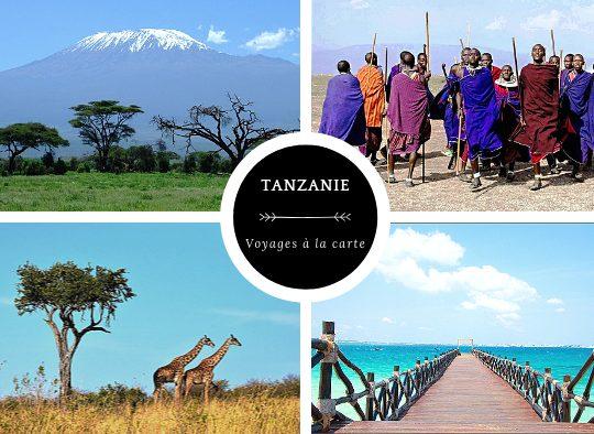 A la carte : votre voyage sur mesure en Tanzanie - Les matins du monde
