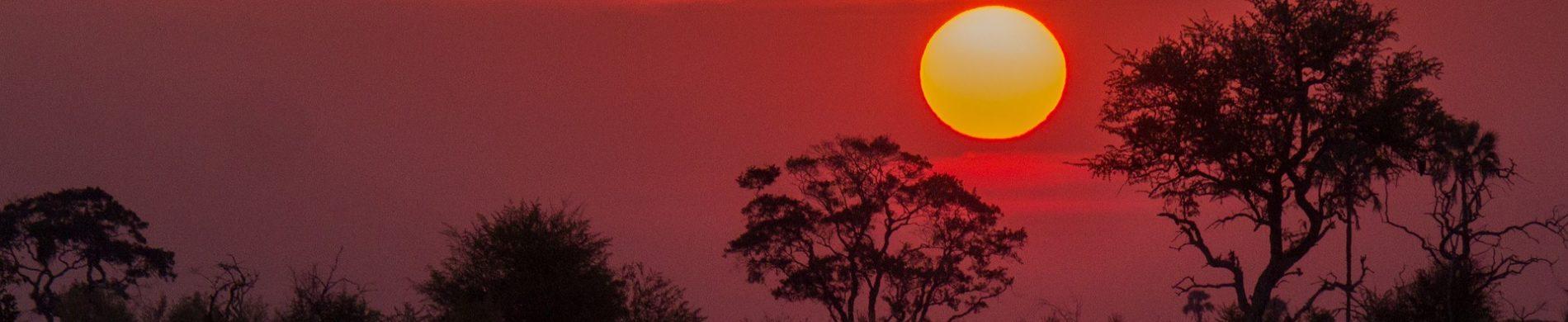 Botswana - Le grand Botswana - Les matins du monde
