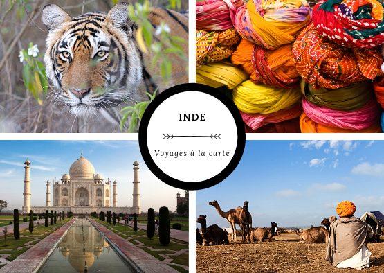 Inde - A la carte : votre voyage sur mesure - Les matins du monde
