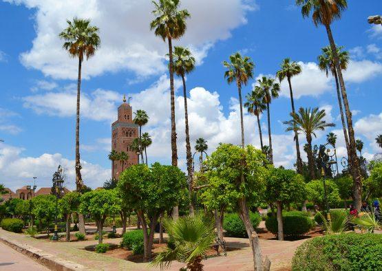 Maroc - Grande découverte du Sud Marocain - Les matins du monde