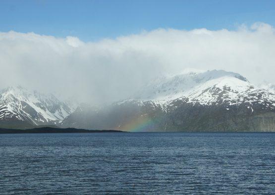 Norvège - Bateau - Ski de randonnée dans les Lofoten - Les matins du monde