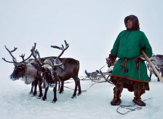 Oural - Ski au pays des Nénètses - Les matins du monde