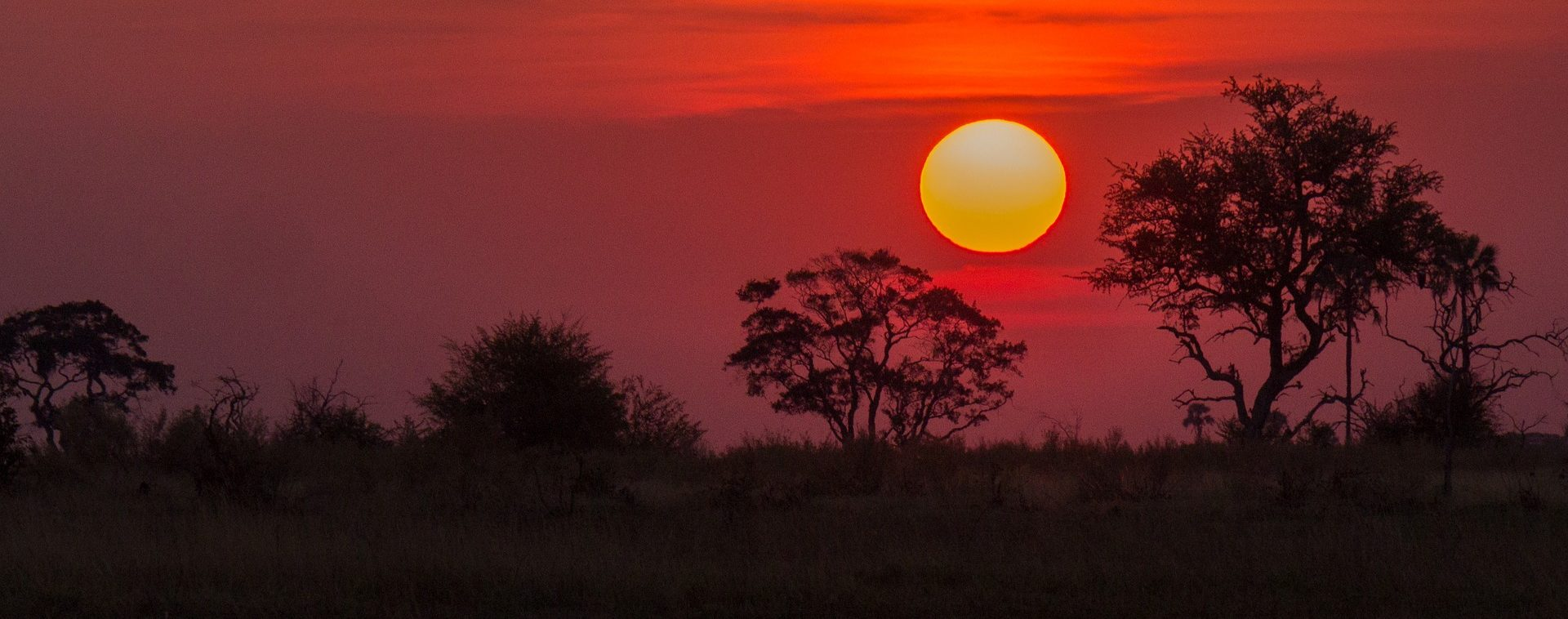 Botswana - Les Matins du Monde