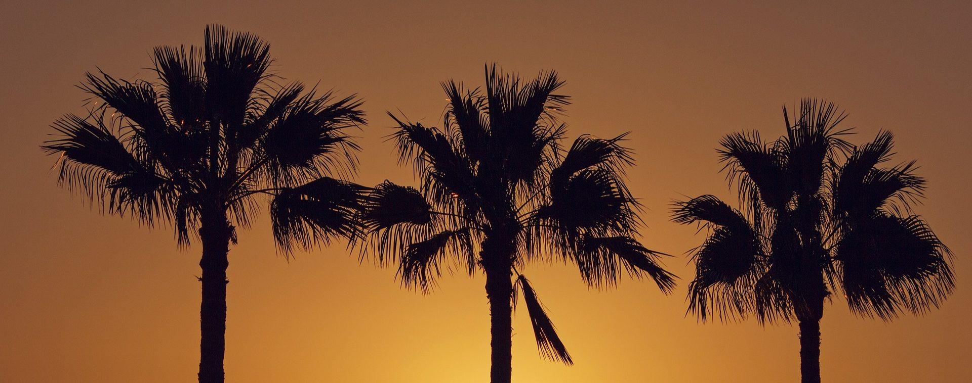 Canaries - Lanzarote et Fuerteventura - Les matins du monde