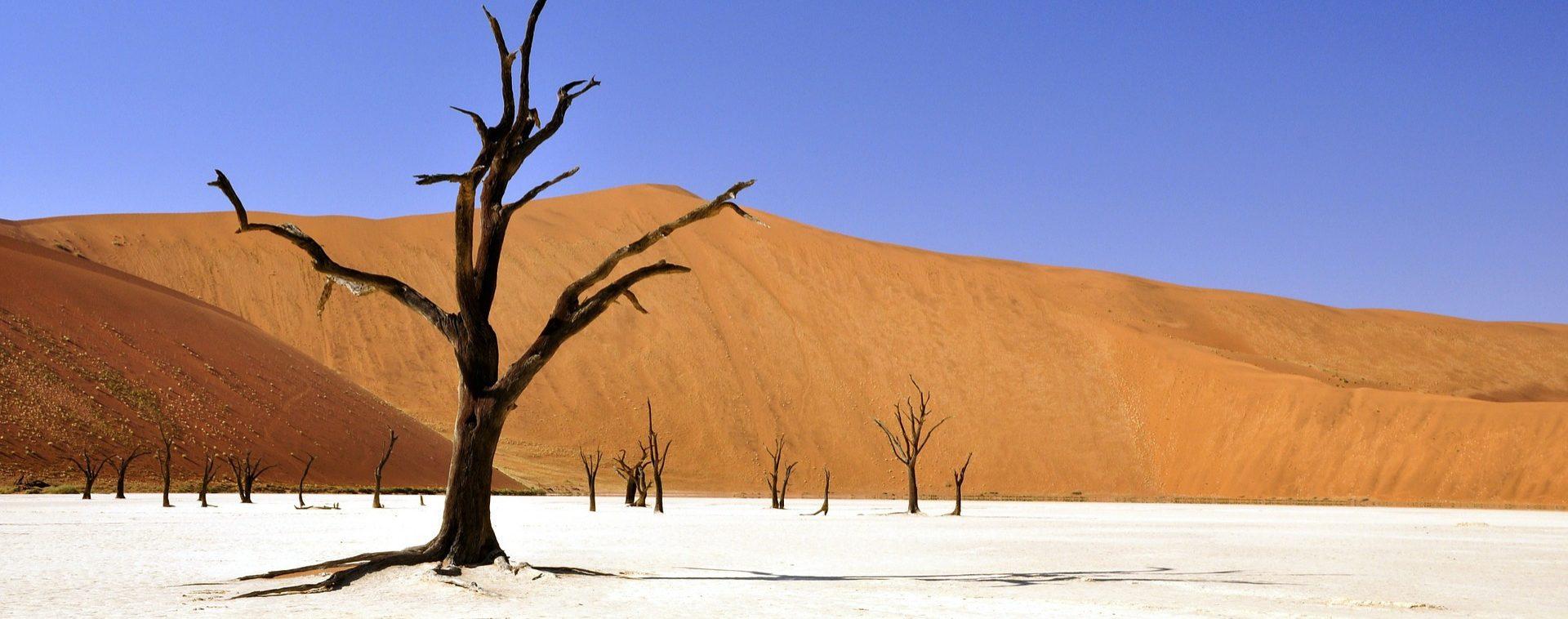 Namibie - Les Matins du Monde