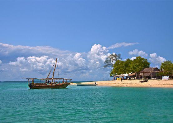 Tanzanie - Safari découverte et Zanzibar - Les matins du monde